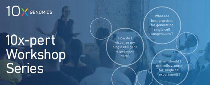 Imagen del workshop 10x
