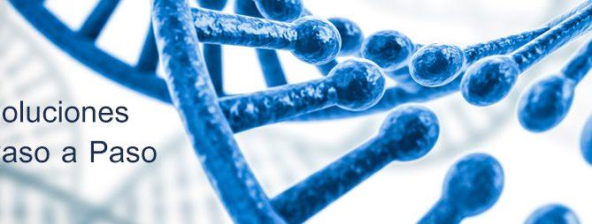 Soluciones paso a paso para estudios genéticos