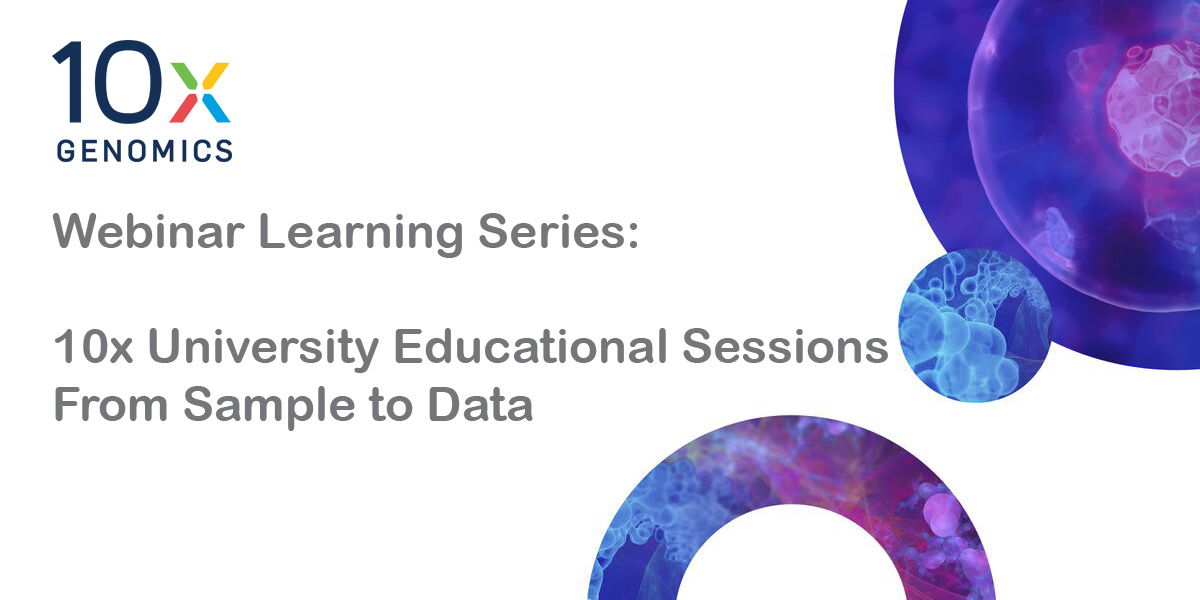 10x learning series
