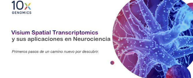 Visium para neurociencias